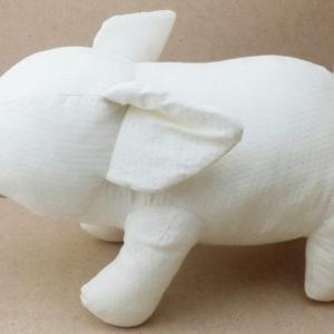 Healthty Pig