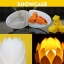 เครื่องพิมพ์ 3 มิติ Anycubics Chiron 3D Printer (Pre-order 3 สัปดาห์) thumbnail 12