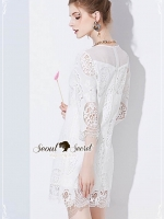 Seoul Secret Say's... Nifty Chiffon Jointy Lace Dress