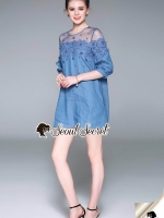 Seoul Secret Say's... Chill Mesh Fabric Lace Dress