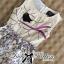 Lady Ribbon's Made &#x1F380 Lady Anna Dreamy Garden Embroidered Sleeveless Dress thumbnail 8