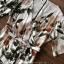 เสื้อผ้าแฟชั่นเกาหลี Lady Ribbon Thailand Seoul Secret Say's...Debris Flower So Sexy Turn After thumbnail 5
