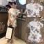 เสื้อผ้าแฟชั่นเกาหลี Normal Ally Present Spring print and 3D flower playsuit by K.S brand thumbnail 2