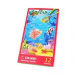 COLLEEN 12 Watercolour Pencil