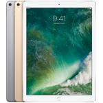 เคส iPad Pro 12.9 (Gen 2) 2017