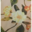 ชุดเดรสแฟชั่นผ้าลายดอกสีชมพูโอรส thumbnail 9