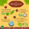 4วิธีดับร้อนแบบไทย