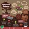 ความจริงของช็อกโกแลต กับสุขภาพและน้ำหนักตัว