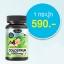 อาหารเสริม นมเม็ด AuswellLife Colostrum Tablet 1,000 mg. IgG 60 mg. 3 ขวด 120 เม็ด thumbnail 1