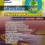 แนวข้อสอบวิศวกรโยธา กรมทางหลวงชนบท 2560 thumbnail 1