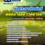 แนวข้อสอบ นักประชาสัมพันธ์ พนักงานมหาวิทยาลัย อัพเดทใหม่ 2560 thumbnail 1