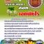 ++แม่นๆ หนังสือ+Mp3 ครูอาชีวศึกษา เอกพืชไร่ thumbnail 1