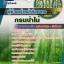 แนวข้อสอบราชการกรมป่าไม้ ตำแหน่งผู้ช่วยเจ้าหน้าที่เกษตร อัพเดทใหม่ 2560 thumbnail 1
