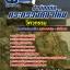แนวข้อสอบราชการ สำนักปลัดกระทรวงกลาโหม วิศวกรรม อัพเดทใหม่ 2560 thumbnail 1
