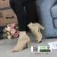 รองเท้าส้นสูง ฉลุลายสุดหรู 711102-KAKI [สีกากี] thumbnail 2