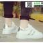 รองเท้าผ้าใบ sneaker SG-171-GRY [สีเทา] thumbnail 4
