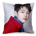 หมอนนอนเกาหลี ซง จุง-กิ แต่งลายน่ารัก มี24แบบ