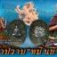 เหรียญมหาปราบ หมื่นยันต์ เนื้อเงิน thumbnail 4
