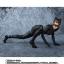 เปิดจอง S.H. Figuarts Catwoman TamashiWeb Exclusive (มัดจำ 500 บาท) thumbnail 6