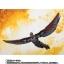 เปิดจอง S.H. Figuarts Falcon TamashiWeb Exclusive (มัดจำ 700 บาท) thumbnail 3