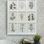 กรอบภาพพิมพ์ดอกไม้สไตล์วินเทจ 9 ช่อง Wall art print - Botanical Gallery thumbnail 1