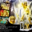 D.D.PANORAMATION Lightning In The Palace Of The Lion - Leo Aioria thumbnail 12
