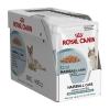 Royal Canin Hairball Care 430รวมส่ง