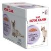 อาหารแมวแบบเปียก Royal Canin Sterilised 10โหล3785รวมส่ง