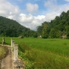 ที่สวย 21 ไร่ อำเภอเมือง แม่ฮ่องสอน ★ The beautiful land 21 rai of Mae Hong Son ★
