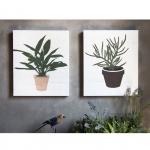 วอลล์อาร์ตสเตนซิล Wall art stencil small plant