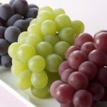 สารสกัดจากเมล็ดองุ่น Grape Seed คุณค่าแห่งสุขภาพและความงาม