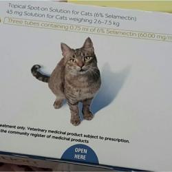Revolution สำหรับแมวโต น้ำหนัก 2.6-7.8กก. 630รวมส่ง