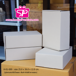 H-01-009 : กล่องลูกฟูกทรงหูช้าง ขนาด 25.0 x 36.0 x 12.0 ซม.