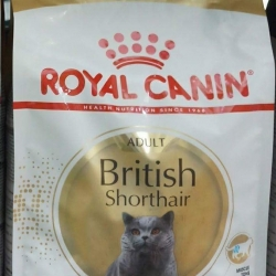royal canin british shorthair adult 2kg 700รวมส่ง