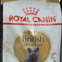 royal canin british shorthair adult 2kg 700รวมส่ง
