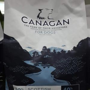 คานาแกน อาหารหมาปลอดธัญพืช canagan scottish salmon 2kg ราคา 1000รวมสาง
