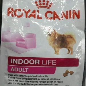 royal canin indoor life small adult 600รวมส่ง