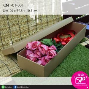 CN1-01-001 : กล่องฝาครอบ ขนาด 20.0 x 59.5 x 10.5 ซม.