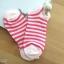 เซตถุงเท้า ลายทาง สีผสม ( 6 คู่ ) thumbnail 2