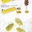 Pavoni Mould พิมพ์ไอศกรีมแท่ง ไอศกรีมแซนวิช ถาด ไม้ไอติม [แล้วแต่แบบ กรุณาดูแคตตาล็อก] thumbnail 6