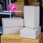 H-01-009 : กล่องลูกฟูกทรงหูช้าง ขนาด 25.0 x 36.0 x 12.0 ซม. thumbnail 1