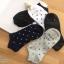 เซตถุงเท้า ลายจุดดาว สีพื้น ( 5 คู่ ) thumbnail 1
