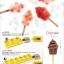 Pavoni Mould พิมพ์ไอศกรีมแท่ง ไอศกรีมแซนวิช ถาด ไม้ไอติม [แล้วแต่แบบ กรุณาดูแคตตาล็อก] thumbnail 8