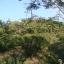 สวนผสม วิวสวย 37 ไร่ เชียงใหม่ &#x2605 37 rai of beautiful gardens mixed views of Chiang Mai &#x2605 thumbnail 9