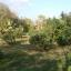 สวนผสม วิวสวย 37 ไร่ เชียงใหม่ &#x2605 37 rai of beautiful gardens mixed views of Chiang Mai &#x2605 thumbnail 8