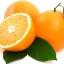 OBOR ส้ม (น้ำมัน) Orange (Oil Based) thumbnail 1