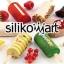 Silikomart พิมพ์ไอศกรีมแท่ง ไม้ไอศกรีม และถาดโชว์ [แล้วแต่แบบ กรุณาดูแคตตาล็อก] thumbnail 1