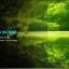 ฟิล์มกระจก iPhone5/5s/SE (Blue Light Cut) ฟิล์มถนอมสาย thumbnail 15