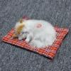 ตุ๊กตาแมวเหมือนจริงนอนหลับ สีขาวหัวสีเหลือง 14x17 CM
