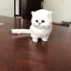 ตุ๊กตาจำลองแมวนั่ง สีขาว 11x15 CM [มีเสียง]